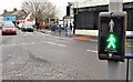 C8532 : &quot;PUFFIN&quot; crossing, Coleraine (2) by Albert Bridge