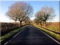 SJ4868 : Lane near Great Barrow by Jeff Buck