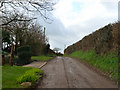 SW9447 : Tregonjohn, on the road from Fair Cross to Creed by Mike Lyne