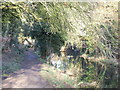 TQ5264 : Darent Valley Path near Lullingstone by Malc McDonald