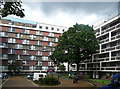 TQ2681 : Hallfield Estate, Bishop's Bridge Road (1) by Stephen Richards