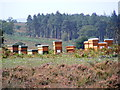 SU2115 : Beehives near Coopers Hill by Gillian Moy