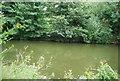 TQ7454 : River Medway by N Chadwick
