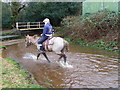 SU1713 : New Forest pony at work, Blissford by Miss Steel