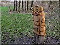 SD7912 : Carved Figures, Burrs Country Park by David Dixon