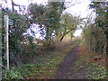 TM2851 : Bridleway to the A12 by Adrian Cable
