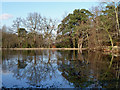 TQ4164 : Top fishpond, Keston Common by Robin Webster