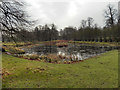 SJ7387 : Old Man's Pool, Dunham Massey Park by David Dixon