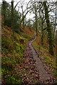 SS9042 : Path rounding Hollow Combe by Graham Horn