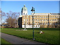 TQ3179 : Imperial War Museum from Geraldine Mary Harmsworth Park by Ian Yarham