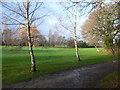 SJ4873 : Helsby Golf Course by Eirian Evans