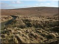 SX6086 : Moorland near Ockerton Court by Derek Harper