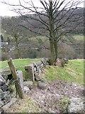 SE0023 : Lower Lumb Lane, Cragg Vale by Humphrey Bolton