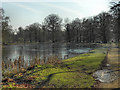 SJ7387 : Island Pool and Farm Walk, Dunham Park by David Dixon