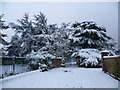 TQ4577 : Entrance to Rockcliffe Gardens in the snow by Ian Yarham