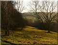 SU8295 : View from West Wycombe Hill by Graham Horn