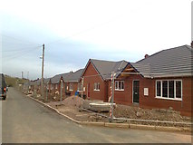 SJ8752 : New houses, Warren Road, Monks-Neil Park by Alex McGregor