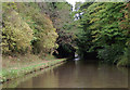 SJ8318 : Shropshire Union Canal south of Gnosall, Staffordshire by Roger  Kidd