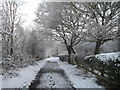 TQ5486 : Footpath to The Dell, Hornchurch, Essex by Derek Voller