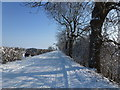 TF4032 : Snow covered -  Barge Road, Holbeach St Matthew by Richard Humphrey