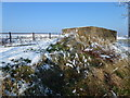 TF4033 : The Wash coast in winter - Pillbox on the sea bank by Richard Humphrey