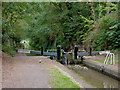 SJ6832 : Tyrley Bottom Lock No 5, Staffordshire by Roger  Kidd