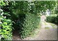 SU9093 : Footpath entrance by Graham Horn