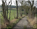 SK2374 : Tree lined track to Coombs Dale by Andrew Hill