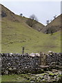 SK1774 : Tansley Dale by Andrew Hill
