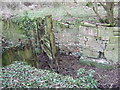 SU1998 : Lock gate, disused Thames and Severn Canal near Dudgrove Farm by Vieve Forward