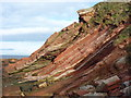 NT7970 : Coastal Berwickshire : Dipping Strata at Pease Bay by Richard West