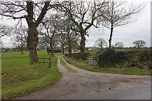 SJ8469 : Toll Bar Farm from Blackden Lane Siddington by Peter Turner
