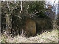 NZ1662 : Retaining wall and ruined building, Blaydon Burn by Andrew Curtis