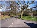SJ5071 : Moss Lane at Manley by Raymond Knapman