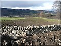 NO0147 : Reinstated dry stone wall by Russel Wills