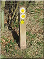 TL8638 : Footpath Guide Post by Keith Evans