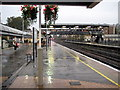 TQ2479 : Damp platform by Philip Jeffrey