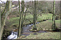 SJ9578 : Harrop Brook confluence by Peter Turner