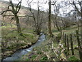 SK1587 : Jaggers Clough below the Backside Wood footbridge by Andrew Hill
