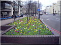 TQ3078 : Flower bed on Vauxhall Bridge London by PAUL FARMER