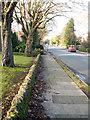 SP0484 : Footway on south west side of Farquhar Road, Edgbaston by Phil Champion