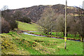 SN9680 : The Afon Dulas at Tylwch by Nigel Brown