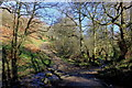 SJ9572 : Tegg's Nose Trail stepping stones and ford by Peter Turner