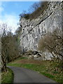 SK1473 : Crag by the Litton Mill lane by Andrew Hill
