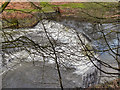 SD7706 : Weir on River Irwell by David Dixon
