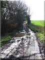 TL9038 : Muddy Track by Keith Evans