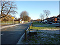 SJ8292 : Central reservation of Mauldeth Road West near Chorlton Park Primary School, Chorlton by Phil Champion