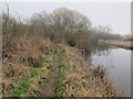 TL7886 : Path along Little Ouse by Hugh Venables