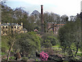 SJ8383 : Quarry Bank Mill and Garden by David Dixon