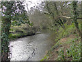 SJ8283 : River Bollin by David Dixon